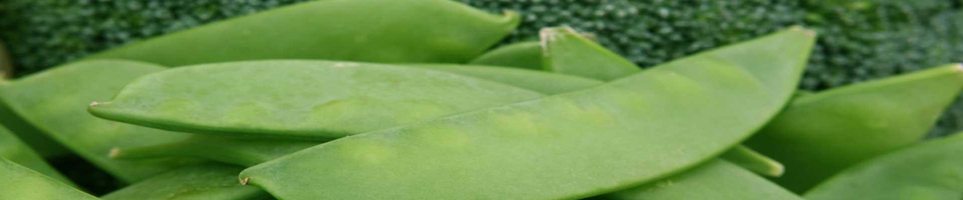 hoe lang moeten peultjes koken? de jonge peulen van de doperwtenplant.