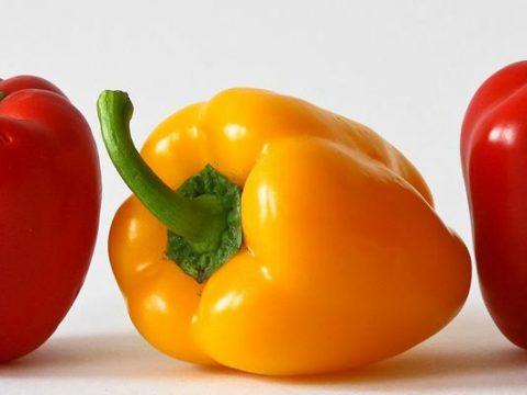 Hoe lang moet paprika koken