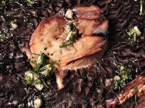 Portobello bakken